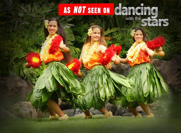 Hula Dancers - Polynesian Cultural Center